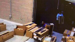Kitshoff Consulting Theft Investigation